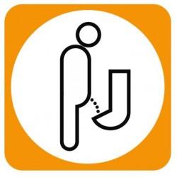Aucollant WC urinoir