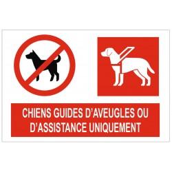 Panneau chiens guides d'aveugles ou d'assistance uniquement