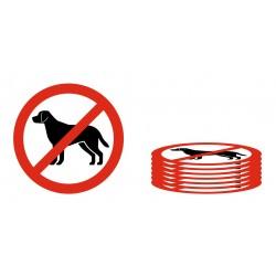 Lot Panneau interdit aux chiens