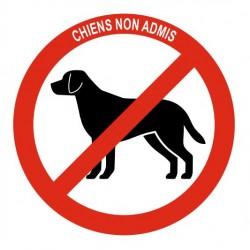 Panneau chiens non admis
