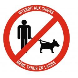 Panneau interdiction aux chiens même tenus en laisse