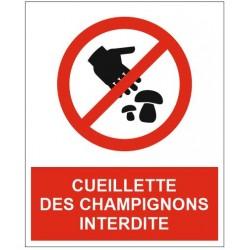Panneau cueillette des champignons interdite
